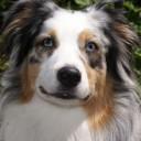 Profilbild von monalisa45