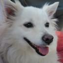 Profilbild von Fiffy