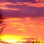 Profilbild von Morgenröte