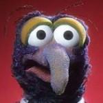 Profilbild von Gonzo16